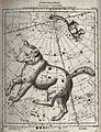 Astronomy; a chart of the constellations Great Bear and Litt Wellcome V0024713.jpg