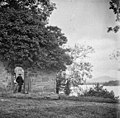 At Innisfallen, Killarney (5600545346).jpg