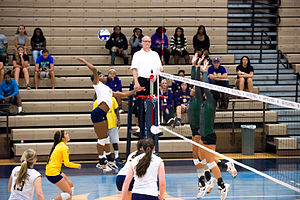 Eastern New Mexico University - The Zias volleyball team in action against the Texas A&M–Commerce Lions in 2014
