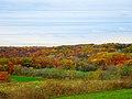 Autumn Colors - panoramio (4).jpg