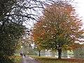 Autumn morning, Hartleton Water - geograph.org.uk - 1575915.jpg