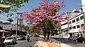 Av. Silva Lobo - panoramio.jpg