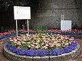Ayr Town Centre - geograph.org.uk - 557042.jpg