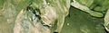 BELUM CAVES-Dr. Murali Mohan Gurram (167).jpg