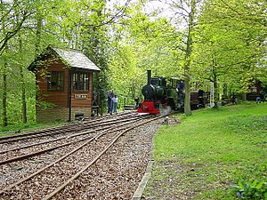 Bredgar and Wormshill Light Railway - Bronhilde pulling into Stony Shaw station