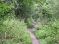 Baggeridge Country Park - The Miners Path - geograph.org.uk - 913933.jpg