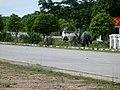 Bago, Myanmar (Burma) - panoramio (59).jpg
