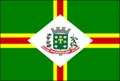 Bandeira Santo Antônio do Jardim.png
