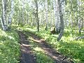 Baymaksky District, Republic of Bashkortostan, Russia - panoramio (5).jpg