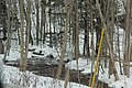 Beaverdale Region - panoramio (14).jpg