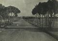 Beirut Entrance road from Khalde - 1947.png