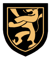 Team emblem: a gold lion on a black shield background