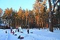 Berdsk, Novosibirsk Oblast, Russia - panoramio (15).jpg