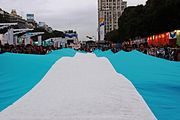 Ver la imagen en su resolución original (4 752 × 3 168 píxeles; . bicentenario bandera argentina