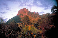 Big bend np.jpg