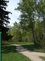 Bila Tserkva, Kyivs'ka oblast, Ukraine - panoramio (115).jpg