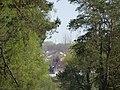 Bila Tserkva, Kyivs'ka oblast, Ukraine - panoramio (74).jpg