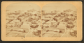 Bird's-eye view of Nantucket, from Robert N. Dennis collection of stereoscopic views.png