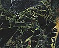 Black Beauty Granite (breccia) (Værlandet Island, Norway) 1.jpg