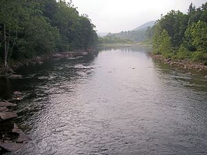 Black Fork (Cheat River) - Image: Black Fork Hendricks West Virginia