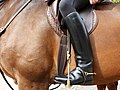 Black Riding Boots.jpg