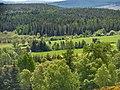 Blackmuir Wood - panoramio (11).jpg