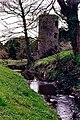 Blarney Castle Grounds - Stream and Tower - geograph.org.uk - 1625399.jpg
