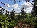 Blick vom Burgstall Gunzendorf - panoramio.jpg