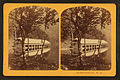 Boat House, Profile Lake, from Robert N. Dennis collection of stereoscopic views 6.jpg