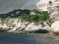 Bonifacio falaise et touristes au soleil.jpg