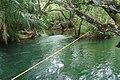 Bonito - MS - Balneário Ilha do Padre (corda bamba) - panoramio.jpg