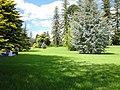 Botanic Gardens, Adelaide.jpg