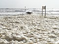 Bournemouth, foam over groyne No.17 - geograph.org.uk - 721334.jpg