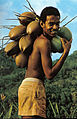 Boy with coconuts Seychelles.jpg