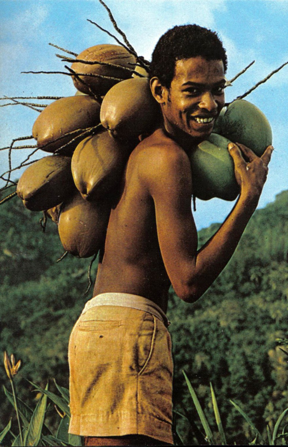 Boy with coconuts Seychelles