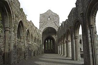 Boyle Abbey human settlement