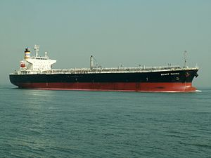 Bright Pacific p3 approaching Port of Rotterdam, Holland 04-May-2006.jpg