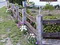 Brockum Garten 6.jpg