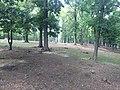 Bronx Zoo - New York - USA - panoramio (8).jpg