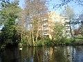 Brooklands Pond, Blackheath Park - geograph.org.uk - 2359964.jpg