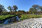 Brooklyn Botanic Garden New York November 2016 003.jpg
