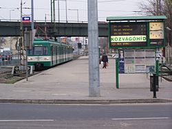 Budapest Local Rail-photo Roland von Bagratuni Railway Market-Infobus.jpg