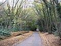 Bull's Green, Queen Hoo Lane - geograph.org.uk - 1560039.jpg