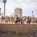 Bull riding at the Calgary Stampede (27708761633).jpg