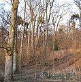 Byres Hill - geograph.org.uk - 370822.jpg