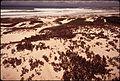 CALIFORNIA-PEBBLE BEACH - NARA - 543193.jpg