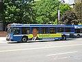 CT Transit 512.jpg