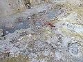 Caldeiras das Furnas GP1090055 (44754374762).jpg