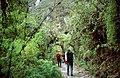 Camino-inca-dia3-c02.jpg
