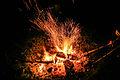 Campfire (15188333373).jpg